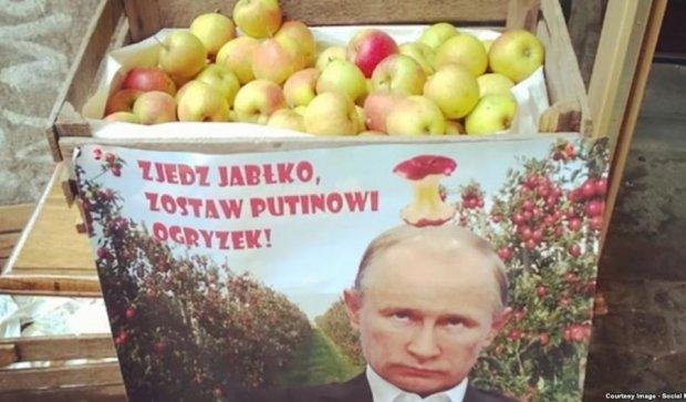 Поляки їдять яблука Путіну назло