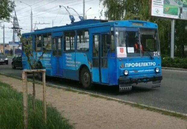 """Черновцы рискуют остаться без троллейбусов - карантин """"убил"""" рогатых"""
