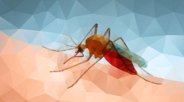 """Спустя шесть лет: ученые """"прихлопнули"""" тропическую инфекцию"""