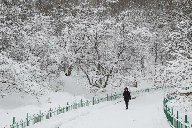 Погода 29 грудня: Івано-Франківськ опиниться в білому полоні хуртовин та ожеледиці