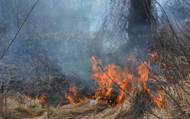 Сотні сімей залишилися без газу на Закарпатті через пожежу