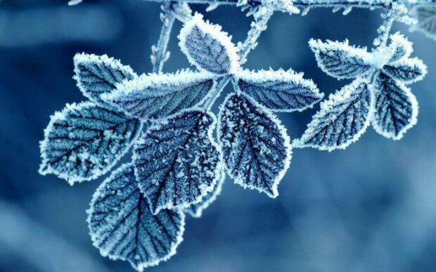 Погода на 1 листопада: стихія підготувала неприємний сюрприз українцям