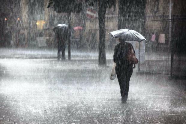 Намочит, зальет, испортит прическу - Винницу атакует мокрый вторник 25 февраля