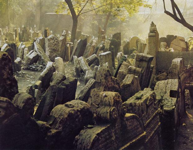 Обнимала младенца левой рукой: жуткое кладбище V века раскрыло археологам все тайны мертвецов