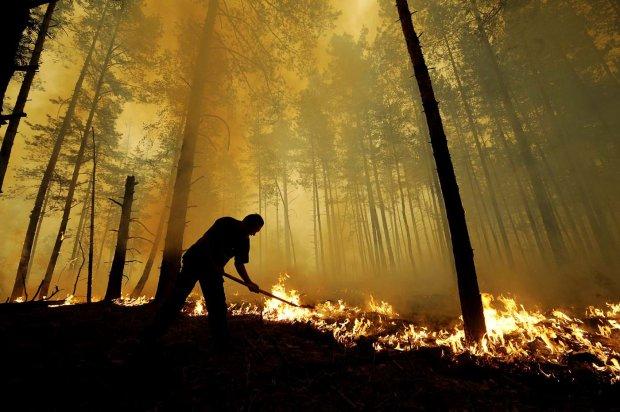 В Чернобыле горят гектары леса: первые подробности
