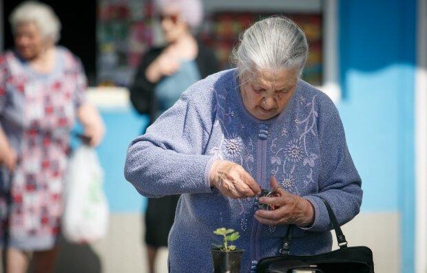 """На старість доведеться збирати останнє, українцям приготували серйозні зміни: """"Працюєш? Пенсії не буде!"""""""