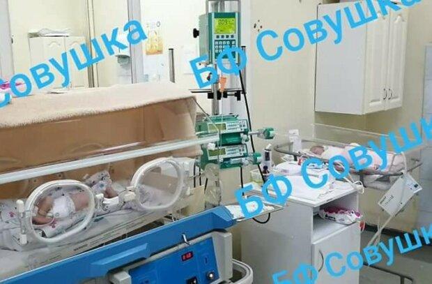 В Днепре спасают семимесячных братика и сестричку, родились раньше срока - букет патологий на двоих