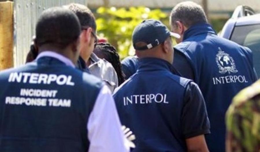 международный уголовный розыск