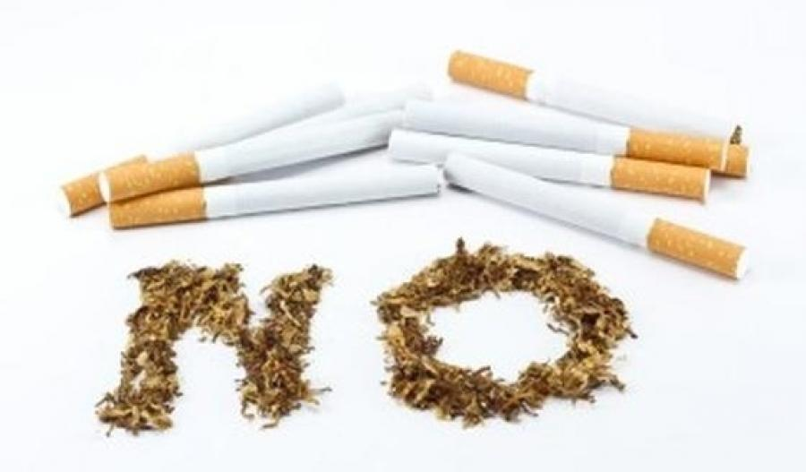 cigarette butt as a household insecticide What are the real ingredience in cigarettes  an amount as small as a cigarette butt  one would find in household detergents like scourers,and.