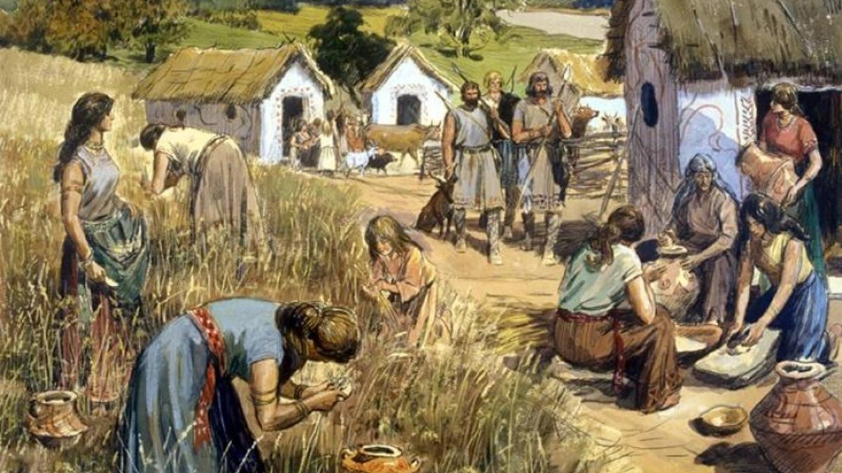 мнению картинки труд земледельцев мёртвой
