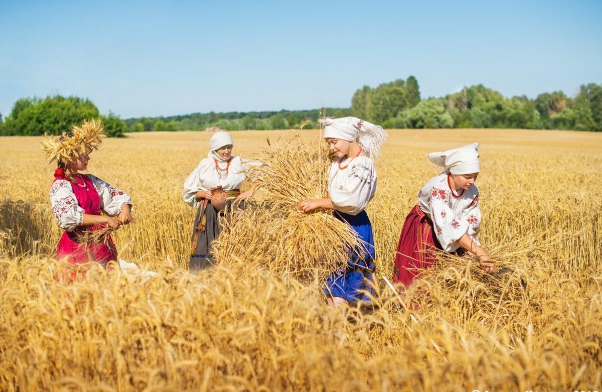 Марки, картинки о хлебе и хлеборобах