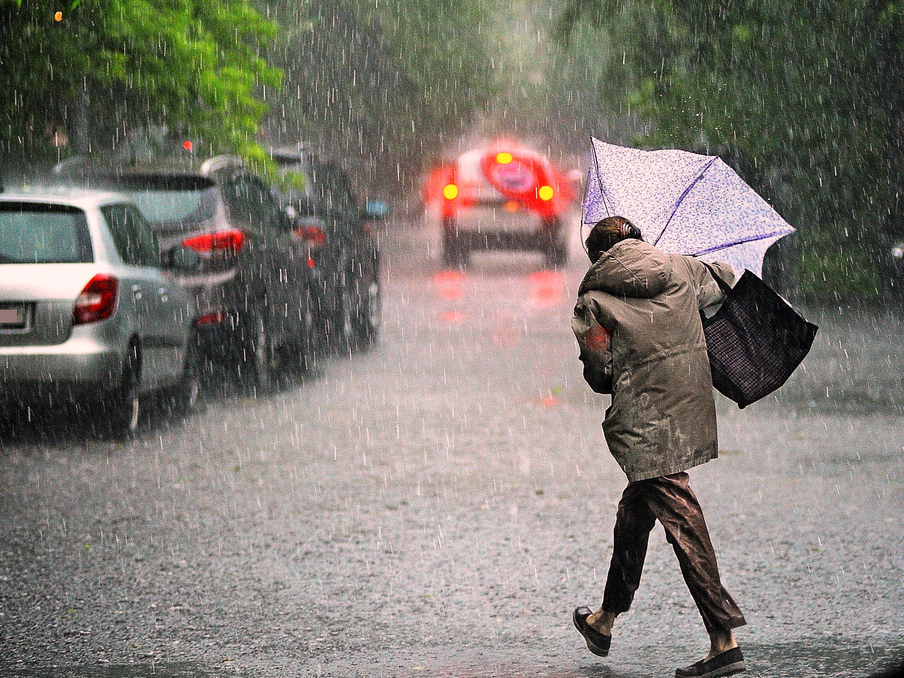Веселые картинки про непогоду
